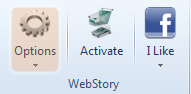 WebStory Options